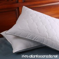 DOWNIGHT Set of 2 Down and Feather Pillow Double layered Fabric Bed pillow Standard/Queen - B07589WY1F