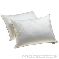 Dream Supreme Plus Gel Fiber-Filled Pillows  Standard (Set of 2) - B000RGXNM4