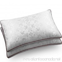 Pillows for Sleeping  AMZ Original Soft Silk Cotton Pillow with Dust Mite Repellent Feather Velvet for Firmable and Breathable Sleep  Queen (2 Pack) - B0738RCCLK