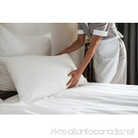 Premium 100% White Goose Down Hotel Pillow Set of 2 (King) - B019ZV6C1A
