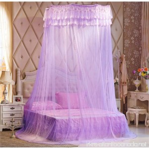 Double Lace Ruffle Bed Canopy Mosquito Net Purple - B01DY65R8G