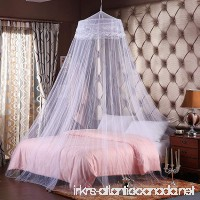 Round Hoop Double Lace Princess Bed Canopy Mosquito Netting Fit Crib Twin Full Queen White - B01FCYA7IS