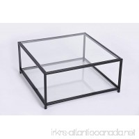 Black Finish Frame Glass Top and Bottom Square Coffee Table - B073XV61FF