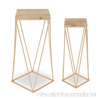 Kate and Laurel Gabriele Metal Accent Nesting Tables with Natural Wood Top and Gold Base  Set of 2 - B07BH2FFH3