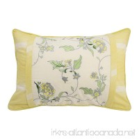 Waverly 15549014X020SPR Paisley Verveine 14-Inch by 20-Inch Embroidered Decorative Pillow Spring - B01MU96Y3L