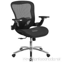 Flash Furniture Mid-Back Transparent Black Mesh Executive Swivel Chair with Synchro-Tilt and Height Adjustable Flip-Up Arms - B014FK264S