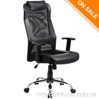 LCH High Back Mesh Office Chair - Ergonomic Computer Desk Task Executive Chair with Padded Leather Headrest and Seat Adjustable Armrests  Black (Black) - B06XKZ83SW
