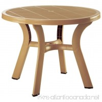 Truva Resin Round Dining Table 42 Inch (Teak Brown) (29H x 42W x 42D) - B005FCZINC